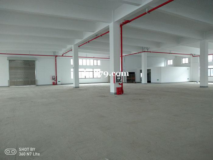 周市原房东全新厂房 单层机械厂房
